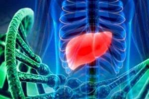 肝脏若呈现了硬化身体这4个改变很明显无妨自查一下