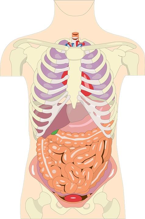 怎么缓解胆囊炎的疼痛胆囊炎是什么